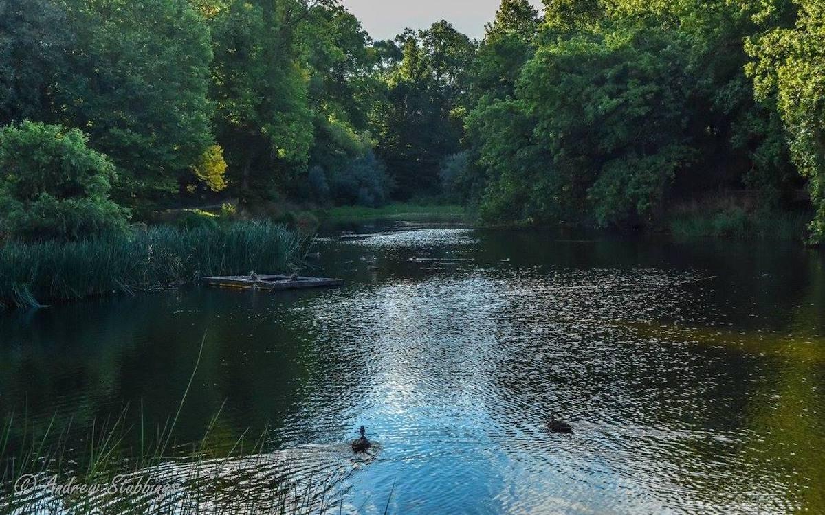 Heytesbury_House_Cobden_Lake