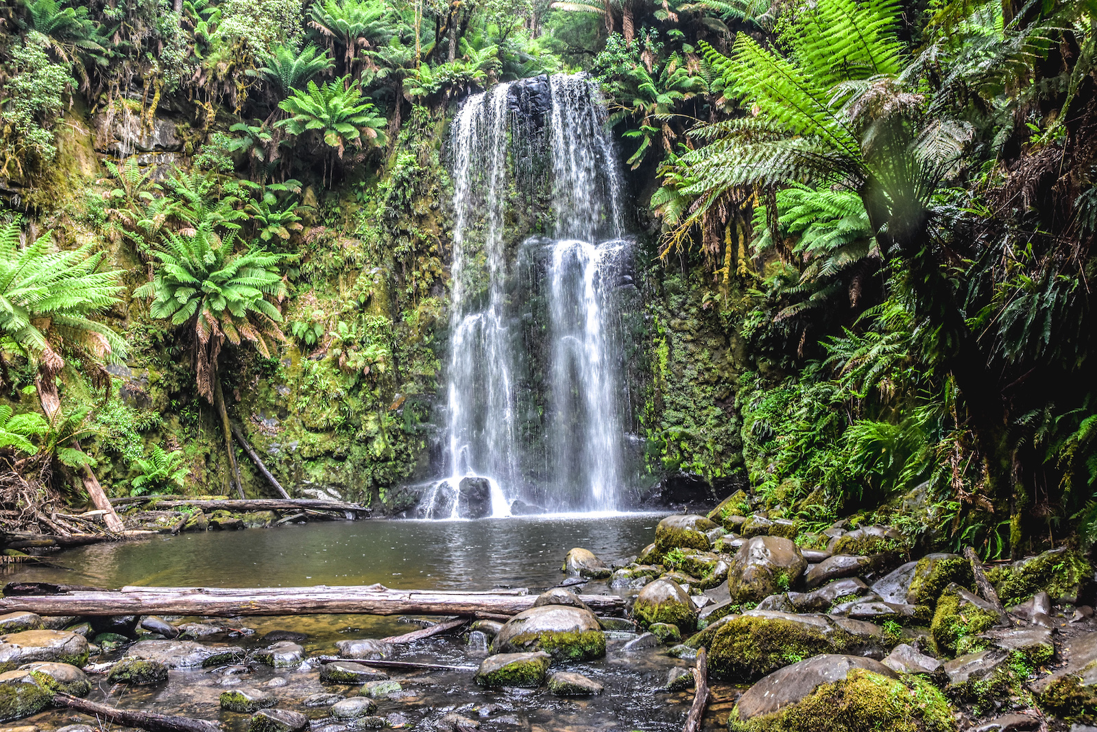 Heytesbury House Region Great Ocean Road Otways Beauchamp Falls