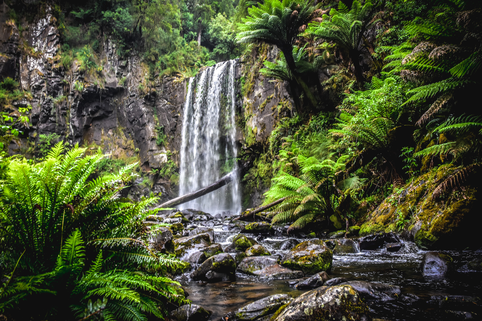 Heytesbury House Region Great Ocean Road Otways Hopetoun Falls