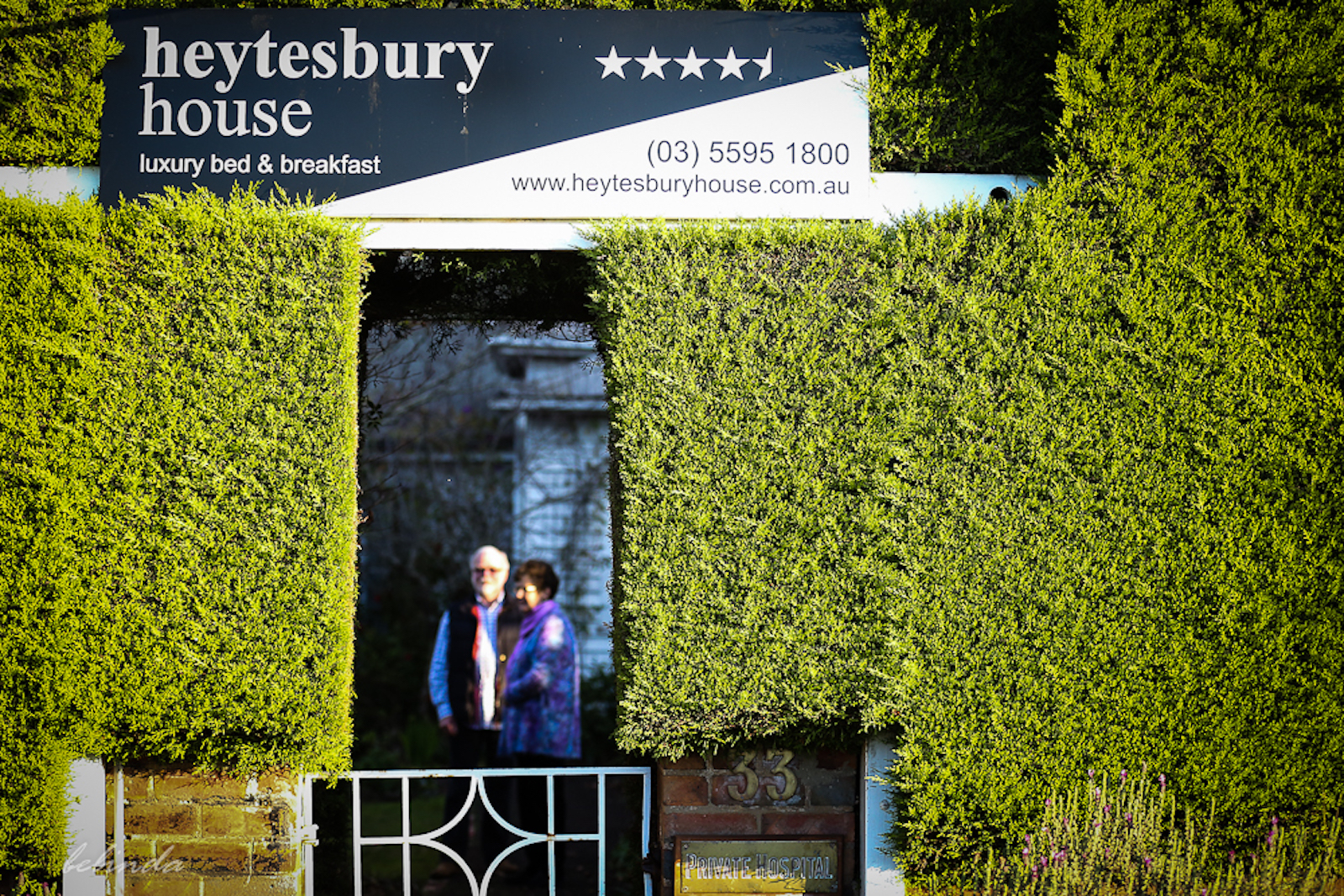 Heytesbury_House_Cobden_Hedge
